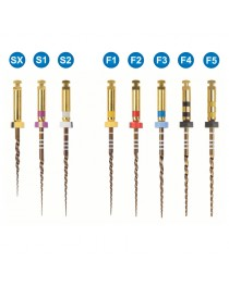Ace rotative PROTAPER DENTSPLY SX 19mm