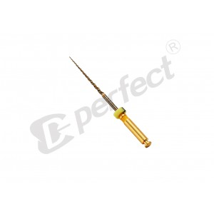 Ace Protaper GOLD (flexibile) T1 (F1) - set 6 buc