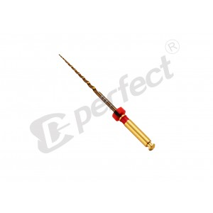 Ace Protaper GOLD (flexibile) T2 (F2) - set 6 buc