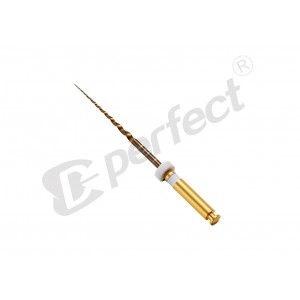 Ace Protaper GOLD (flexibile) V2 (S2) - set 6 buc