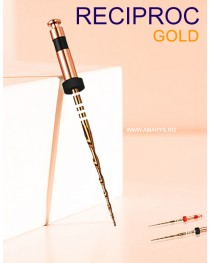 Ace KIT RECIPROC GOLD R40 - 3buc  +1buc PathFile -25mm