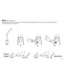 Ansa Endodontie Ed11